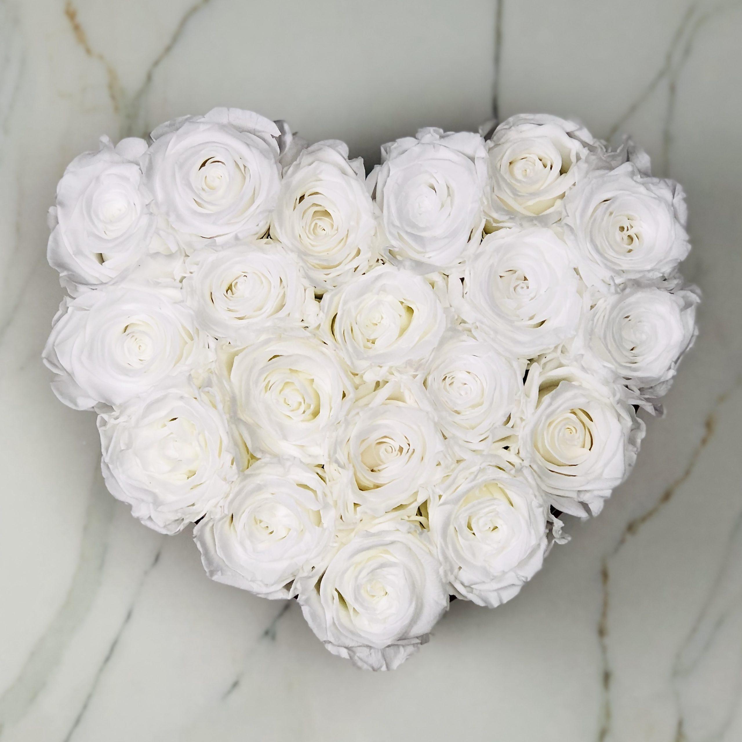 19 White Rosor Hjärt