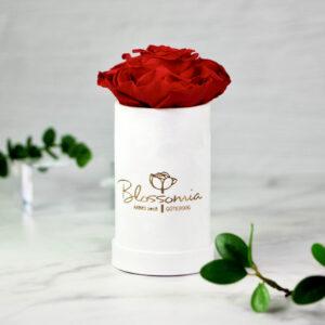 THE PRINCIE - Evighetsros - Röd - Velvet - Pearl White - BER0V00E1 - 1