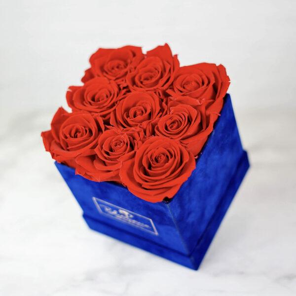 THE LEGACY – Evighetsrosor - Röd - Box Fyrkantig - Royal Blue - BEF2V02E1 - 3