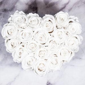 THE HEART OF ETERNITY – White - Evighetsrosor - Velvet - Pearl White - BEH1V00E2 - 3
