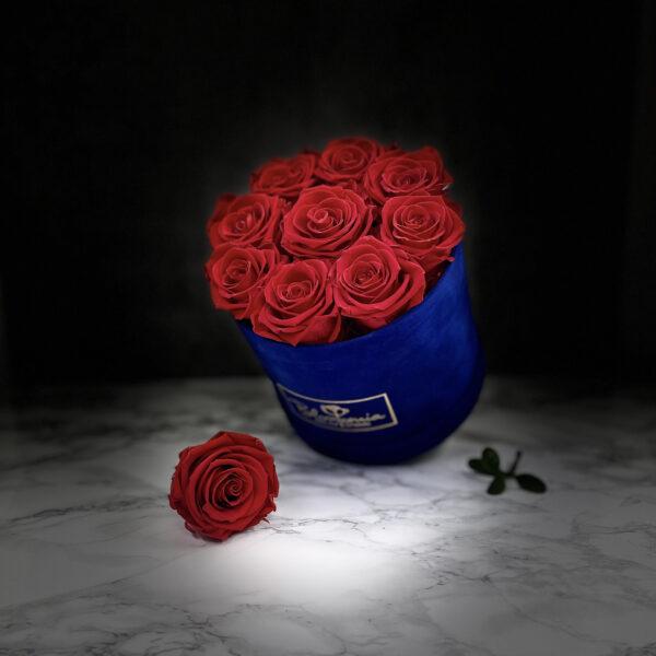 Jubille - Rund box - Velvet - Blue Midnight 3