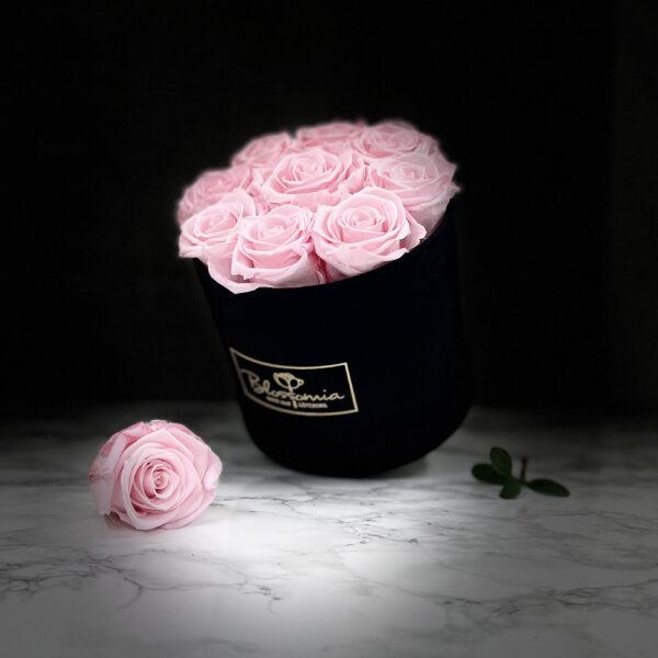 THE JUBILEE – Pink Evighetsrosor Box Rund - Velvet Black Midnight 38