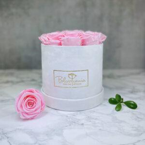 THE JUBILEE – Pink Evighetsrosor Box Rund - Velvet - Pearl White 1