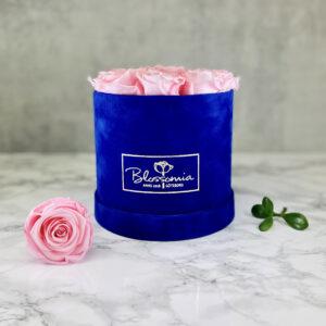THE JUBILEE – Pink Evighetsrosor Box Rund - Velvet - Royal Blue 1