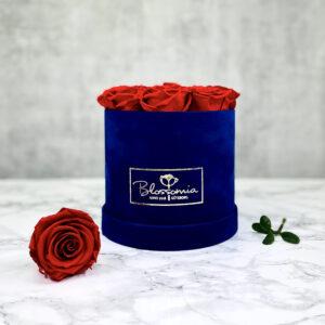 THE JUBILEE – Red Evighetsrosor Box Rund - Velvet Royal Blue 1