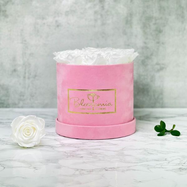 THE JUBILEE – White Evighetsrosor Box Rund - Velvet Pink 1a