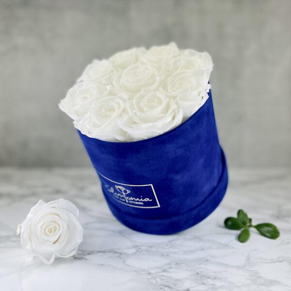 THE JUBILEE – White Evighetsrosor Box Rund - Velvet - Royal Blue 2