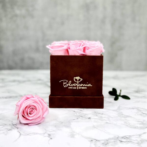 THE LEGACY – Pink Evighetsrosor Box Fyrkantig - Velvet Brown 1