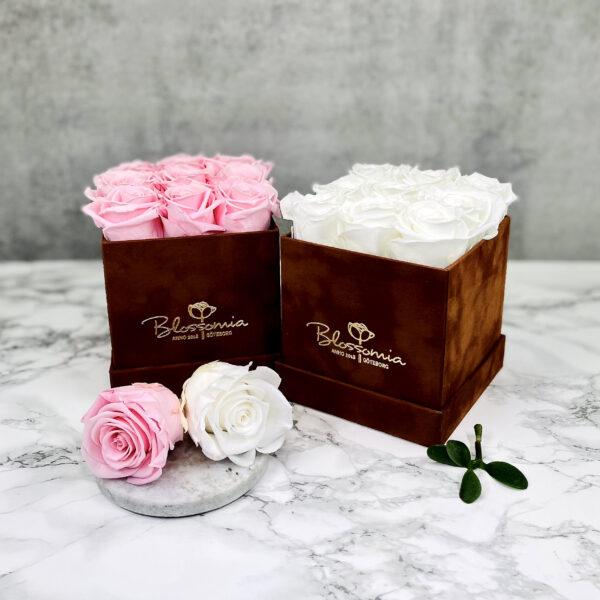 THE LEGACY – White och Pink Evighetsrosor Box Fyrkantig - Velvet Brown 34