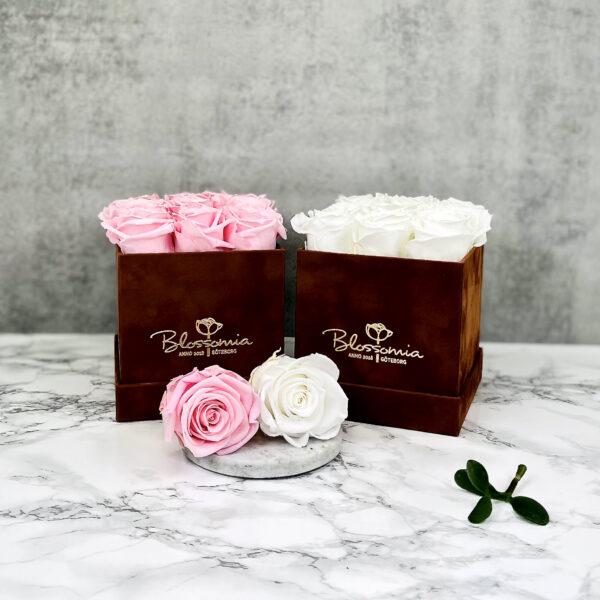 THE LEGACY – White och Pink Evighetsrosor Box Fyrkantig - Velvet Brown 35