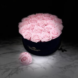THE MILLENIUM STAR – Pink Evighetsrosor Box Rund - Black Midnight 22