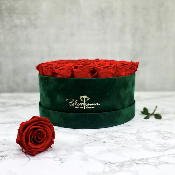 THE MILLENIUM STAR – Red Evighetsrosor Box Rund - Green 1