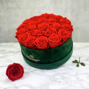 THE MILLENIUM STAR – Red Evighetsrosor Box Rund - Green 2