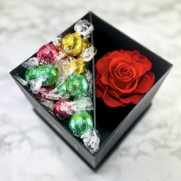 The Aurora - Röd Evighetsros med godis