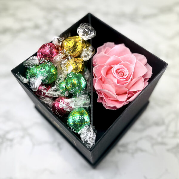 The Aurora - Rosa Evighetsros med godis