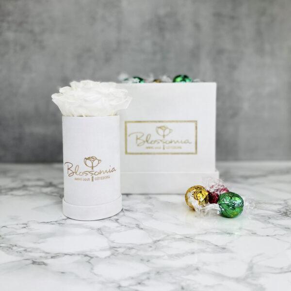 The Aurora - Velvet - White Pearl - Vit Evighetsros med godis